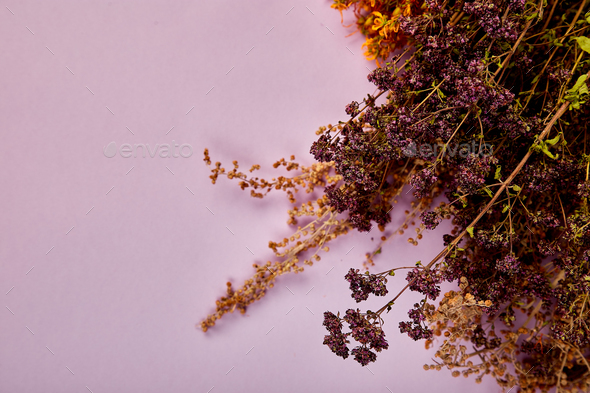 Frame from dry herbs flower - Stock Photo - Images