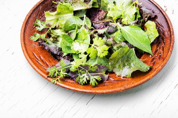 Green vegan salad - Stock Photo - Images