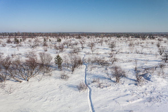 Snowy Landscape With Footpath  - Stock Photo - Images