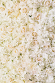 roses, hydrangea, peonies flower as background