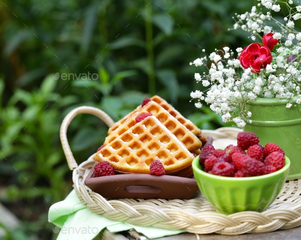 Sweet Waffles with Berries - Stock Photo - Images