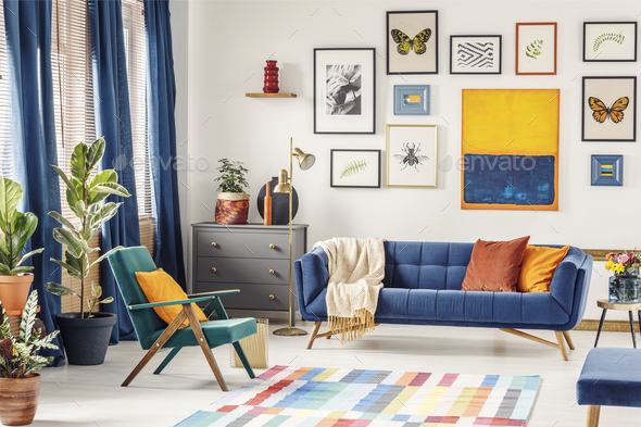 Orange pillow on green armchair near blue couch in colorful livi - Stock Photo - Images