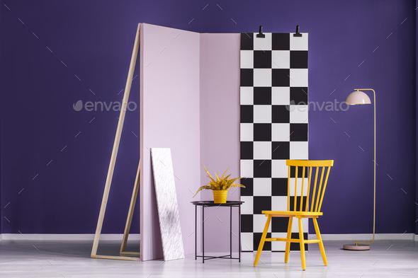 Plant in colorful studio interior - Stock Photo - Images