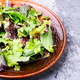 Fresh green salad - PhotoDune Item for Sale