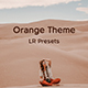 Orange Theme Lightroom Desktop and Mobile Presets