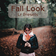 Fall Look Lightroom Desktop and Mobile Presets - GraphicRiver Item for Sale