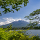 Mount Fuji and green leaves in the foreground - PhotoDune Item for Sale