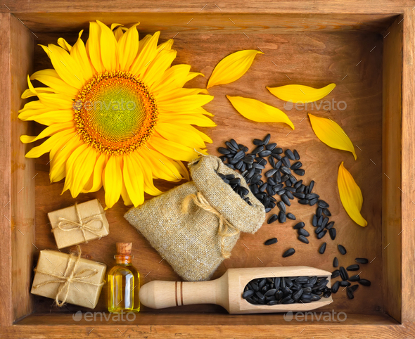 Beautiful composition with sunflower, oil and seeds in bags on w - Stock Photo - Images
