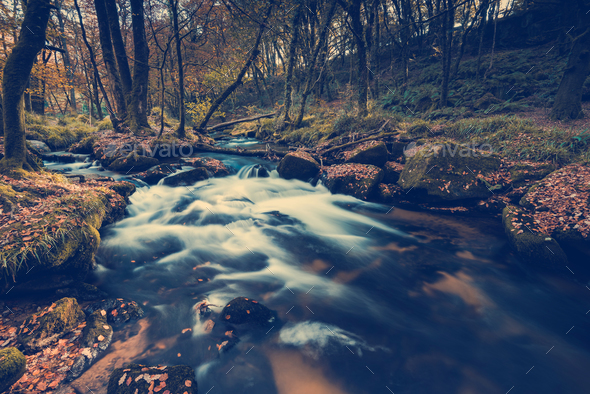 Fast flowing wild creek in forest,toned and colored image - Stock Photo - Images