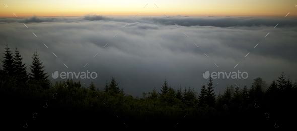 Scenic Foggy Landscape - Stock Photo - Images