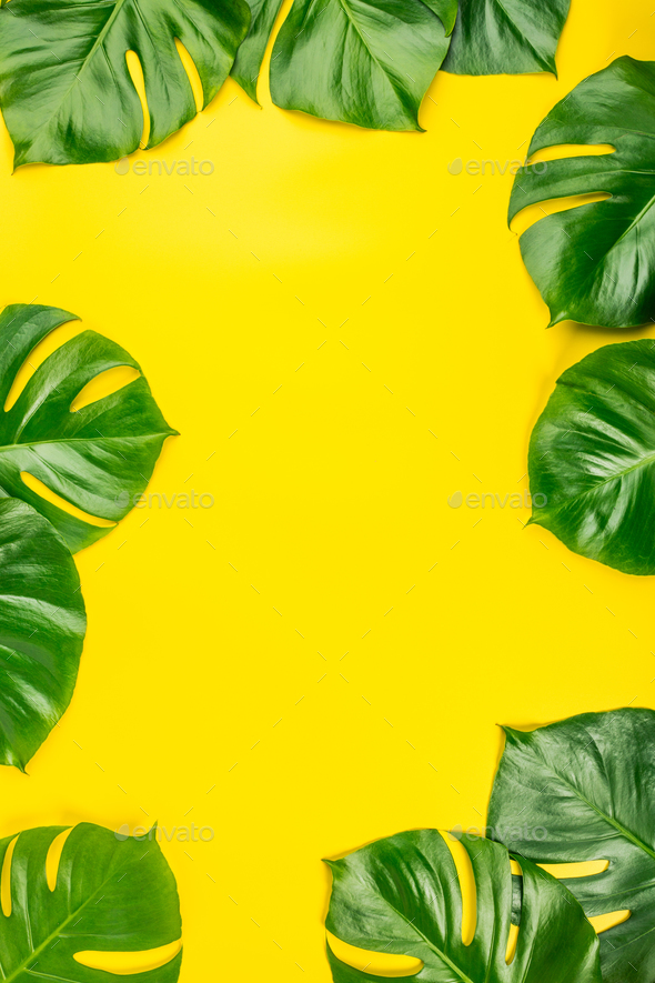 Tropical Leaves On Yellow Background Stock Photo By Klenova Photodune Here you can explore hq tropical leaves transparent illustrations, icons and clipart with filter polish your personal project or design with these tropical leaves transparent png images, make it even. https photodune net item tropical leaves on yellow background 22360028
