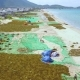 People Picking Seaweed and Drying on Sea Shore Drone View Landscape Blue Sea and Seaweed - VideoHive Item for Sale
