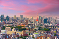 Tokyo, Japan Cityscape at Dusk - PhotoDune Item for Sale