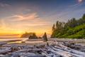Olympic National Park, Washington, USA - PhotoDune Item for Sale
