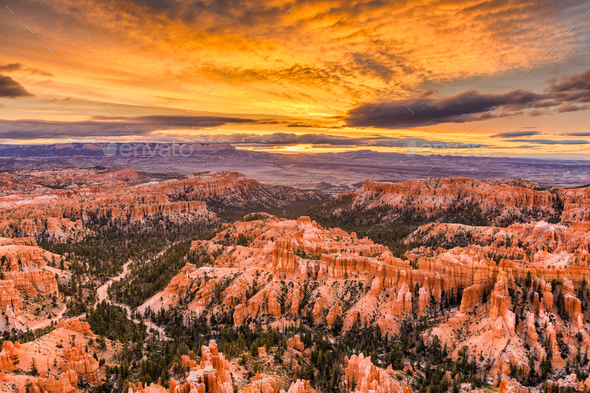 Bryce Canyon National Park, Utah, USA - Stock Photo - Images