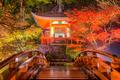 Daigo-ji Temple in Kyoto - PhotoDune Item for Sale