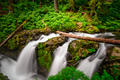 Sol Duc Falls Olympic National Park - PhotoDune Item for Sale