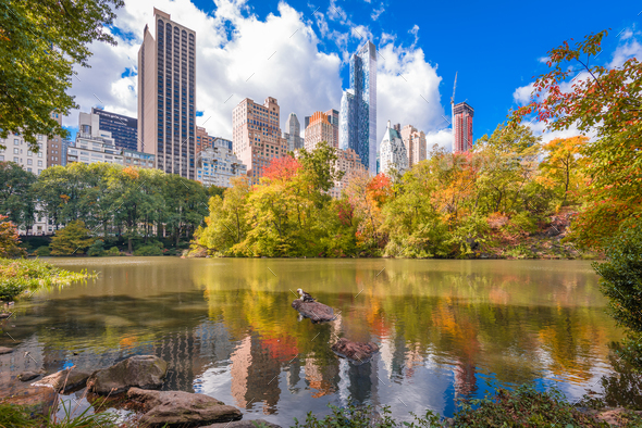 New York City Central Park - Stock Photo - Images