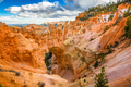 Bryce Canyon National Park, Utah, USA - PhotoDune Item for Sale