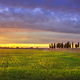 Sunset landscape in Maremma. Rural road and cypress trees. Tusca - PhotoDune Item for Sale