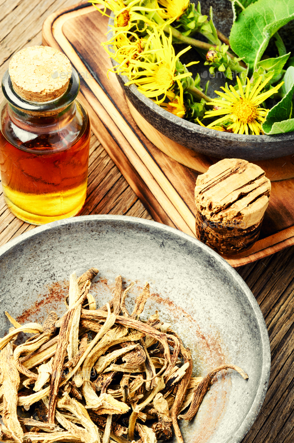 Root and tincture of elecampane - Stock Photo - Images