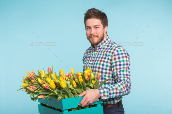 Cheerful handsome man florist holding box of tulips on blue background - Stock Photo - Images