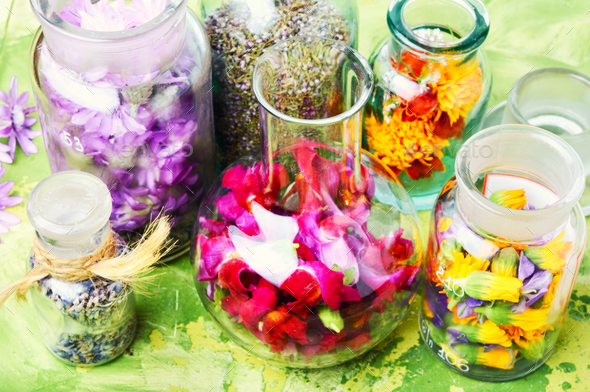 Herbs medicine flowers - Stock Photo - Images