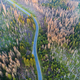 Aerial view of a country road in the forest - PhotoDune Item for Sale