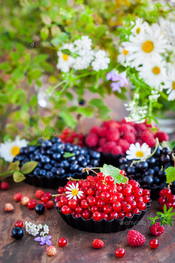 Fresh ripe summer berries - red currant in the foreground and bl - Stock Photo - Images