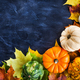 Autumnal colorful pumpkins, apples and fallen leaves  on dark ba - PhotoDune Item for Sale
