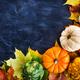 Autumnal colorful pumpkins, apples and fallen leaves  on dark ba - PhotoDune Item for Sale