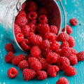 Fresh raspberries in a bucket - PhotoDune Item for Sale