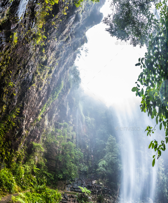 Twin Falls in the Springbrook National Park, Queensland, Austral - Stock Photo - Images