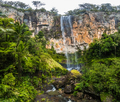 Purling brook falls in the Gold Coast Hinterland, Australia - PhotoDune Item for Sale