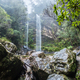 Twin Falls hike in the Springbrook National Park, Australia - PhotoDune Item for Sale