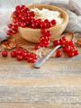 Red currants and yogurt - PhotoDune Item for Sale