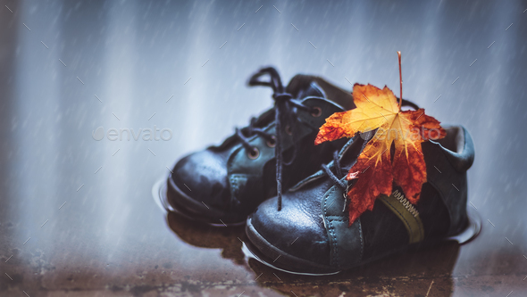 Autumn season concept - Stock Photo - Images