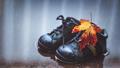 Autumn season concept - PhotoDune Item for Sale