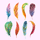 Watercolor Bohemian Feathers