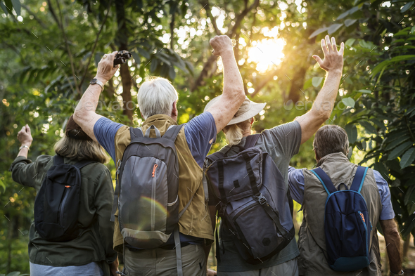 Group of senior adults trekking in the forest - Stock Photo - Images