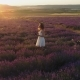 Romantic Walk of Woman Through the Field of Lavender at Sunset - VideoHive Item for Sale