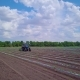 Cucumbers.Vegetables Growing. A Blue Tractor Brings Fertilizers To Cucumber Beds of Open Ground - VideoHive Item for Sale
