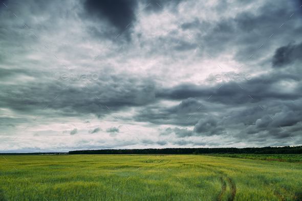 Summer Countryside Rural Field Meadow Landscape Under Scenic Clo - Stock Photo - Images
