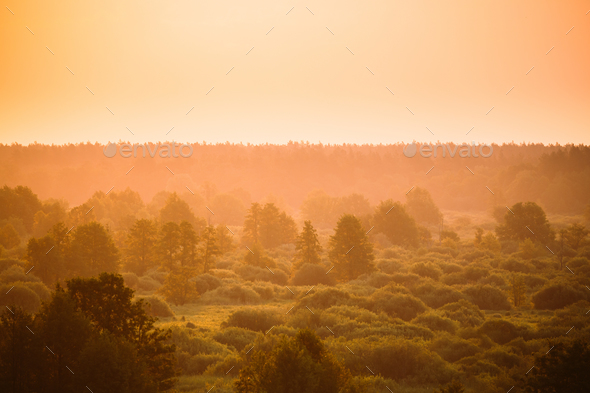 Sunrise Over Misty Forest Landscape In Early Morning. Scenic Vie - Stock Photo - Images