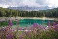 Green lake - PhotoDune Item for Sale
