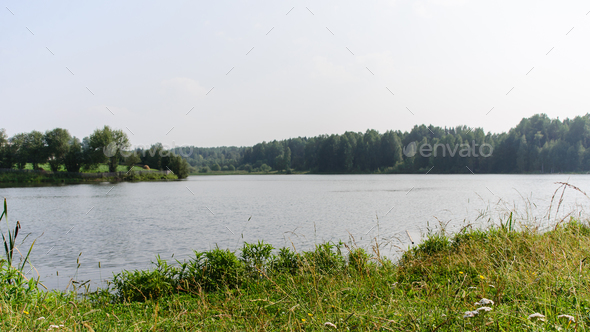 pond shore in countryside - Stock Photo - Images