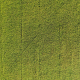 Rice Fields Aerial - VideoHive Item for Sale