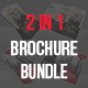 2 in 1 Tri-fold Brochure Bundle - GraphicRiver Item for Sale