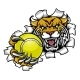Wildcat Holding Tennis Ball Breaking Background