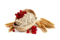Rolled oats and red currant in a bowl - PhotoDune Item for Sale